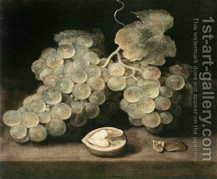 Grape with Walnut by Jacob van Es - Reproduction Oil Painting