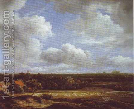 View of the plain of haarlem with bleaching grounds by Jacob Van Ruisdael - Reproduction Oil Painting