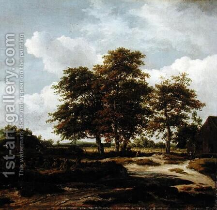 Wooded Landscape with Cornfields 1655 60 by Jacob Van Ruisdael - Reproduction Oil Painting
