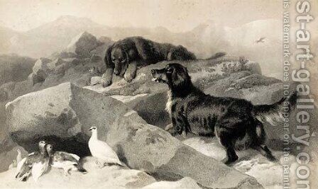 The ptarmigan hill by (after) Landseer, Sir Edwin - Reproduction Oil Painting