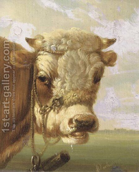A bull's head by Albertus Verhoesen - Reproduction Oil Painting