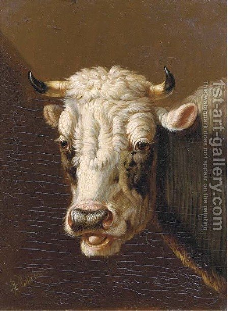 A cow's head by Albertus Verhoesen - Reproduction Oil Painting