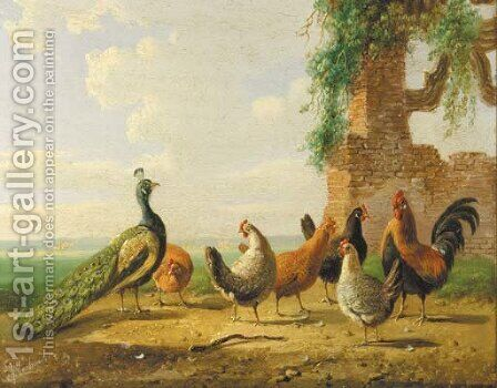 Poultry by ruined walls 2 by Albertus Verhoesen - Reproduction Oil Painting