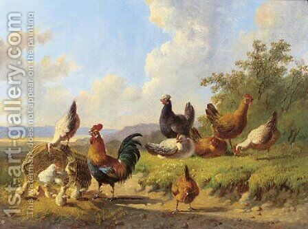 Poultry in a meadow by Albertus Verhoesen - Reproduction Oil Painting