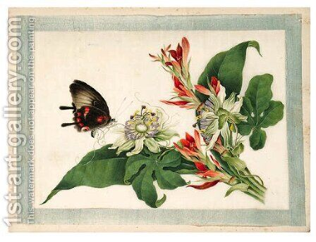 Flower and butterfly by Anglo-Chinese School - Reproduction Oil Painting