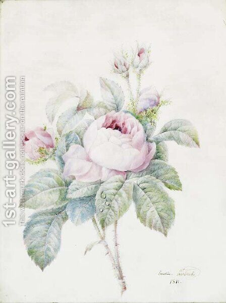 A Spray of pink Roses by Anne-Ernestine Panckoucke - Reproduction Oil Painting