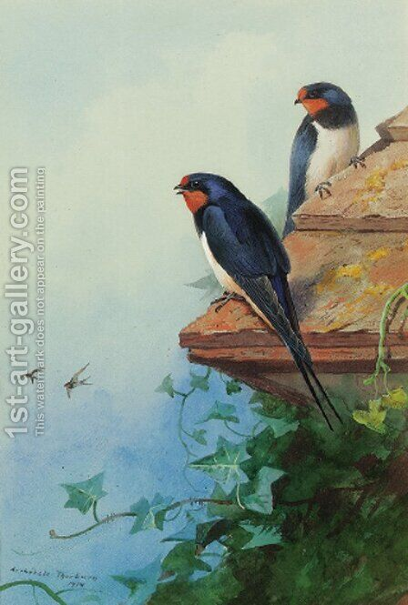 Swallows on an ivy-covered roof by Archibald Thorburn - Reproduction Oil Painting