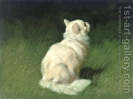 A Persian cat in a garden by Arthur Heyer - Reproduction Oil Painting