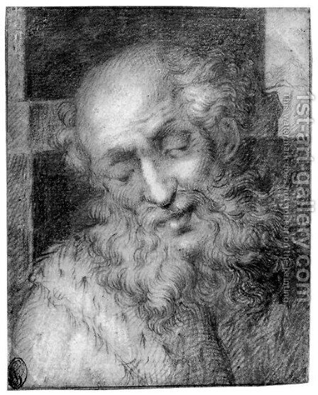 The head of a bearded old man by (after) Camillo Procaccini - Reproduction Oil Painting