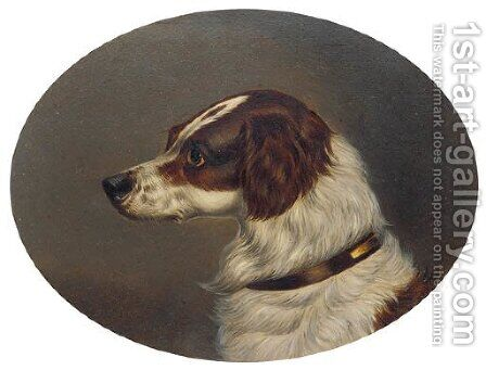 The head of a gundog by (after) Colin Graeme Roe - Reproduction Oil Painting