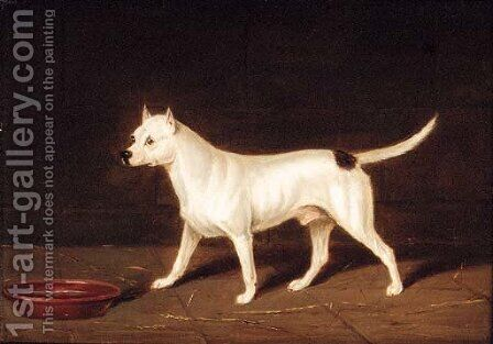 A Bull Terrier in an Interior by (after) Edwin Loder - Reproduction Oil Painting