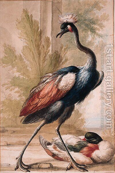 An Emu and a Duck by (after) Gijsbertus Haasbroek - Reproduction Oil Painting