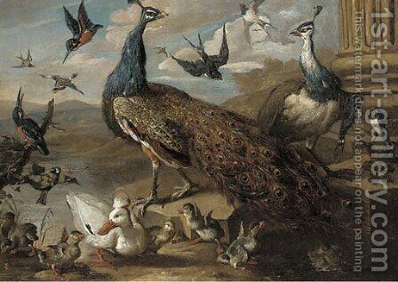A peacock and a peahen by (after) Jacob Bogdani - Reproduction Oil Painting