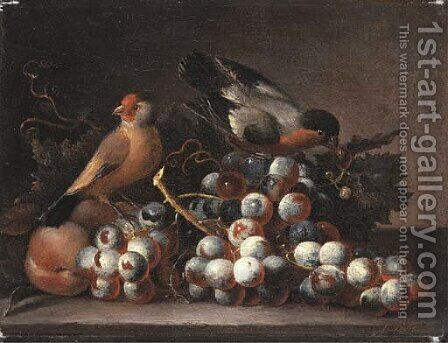 Grapes on the vine and peaches with two finches on a ledge by (after) Jacob Bogdani - Reproduction Oil Painting