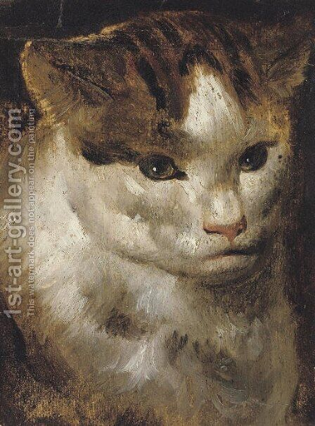 Study of a cat by (after) Jacob Jordaens - Reproduction Oil Painting