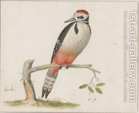 A woodpecker by (after) Pieter The Younger Holsteyn - Reproduction Oil Painting