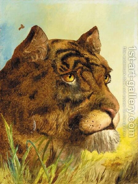 Head of a Tigress by (after) William Huggins - Reproduction Oil Painting