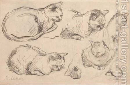 Studies of cats by Auguste-Joseph Carrier - Reproduction Oil Painting