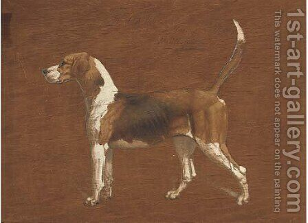 Wallflower, a hound from the North Warwickshire Hunt by Basil J. Nightingale - Reproduction Oil Painting