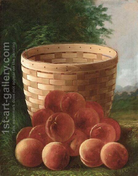 Peaches by a Basket by Carducius Plantagenet Ream - Reproduction Oil Painting