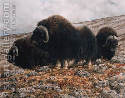 Musk oxen by Carl Brenders - Reproduction Oil Painting