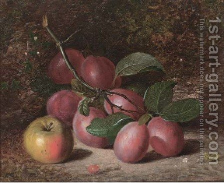 Plums and an apple, on a mossy bank by Charles Archer - Reproduction Oil Painting