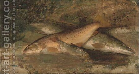 Rainbow trout, pike and perch by (after) A. Roland Knight - Reproduction Oil Painting