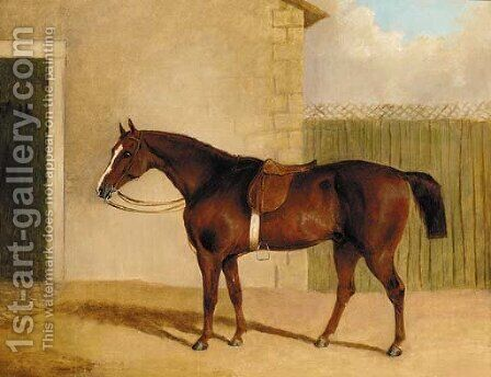A saddled brown hunter by a stable by (after) Albert Clark - Reproduction Oil Painting