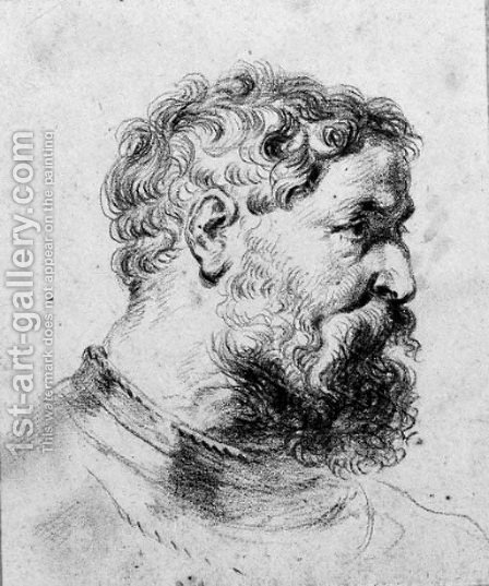 Head of a bearded soldier turned to the right, after Sir Peter Paul Rubens by (after) Watteau, Jean Antoine - Reproduction Oil Painting
