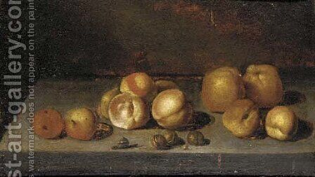 Apples, peaches, walnuts and a snail on a stone ledge by (after) Bartholomeus Assteyn - Reproduction Oil Painting