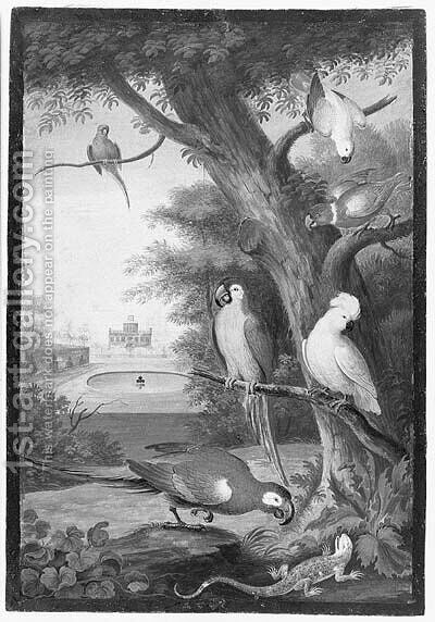 Parrots and a Lizard in a palatial Garden by (after) Johannes Bronkhorst - Reproduction Oil Painting