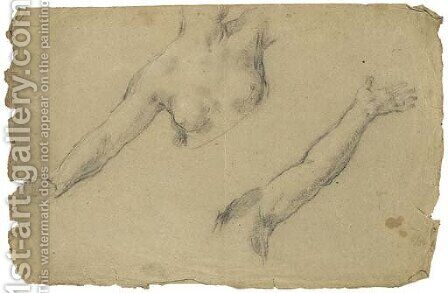 Study of the torso and outstretched right arm of a female nude by (after) Pietro Da Cortona (Barrettini) - Reproduction Oil Painting