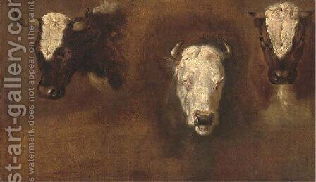 Three studies of bulls' heads by (after) Simon Van Der Does - Reproduction Oil Painting