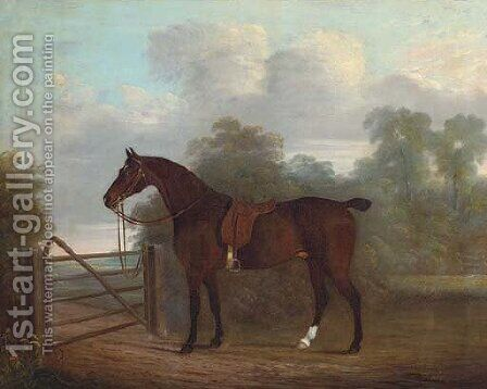 A saddled bay hunter tethered to a gate, in a wooded landscape by Clifton Tomson - Reproduction Oil Painting