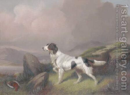 A setter in a moorland landscape by Colin Graeme Roe - Reproduction Oil Painting