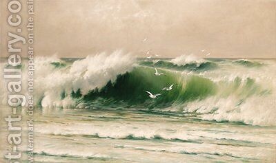 Seascape with seagulls by David James - Reproduction Oil Painting