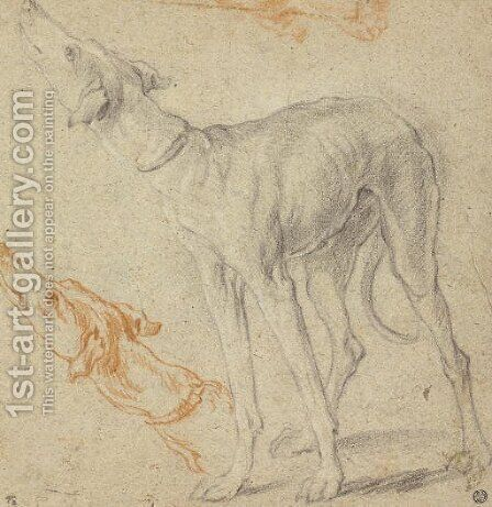 Two studies of a greyhound by Dutch School - Reproduction Oil Painting