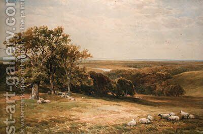 Sheep grazing in an extensive landscape by Edmund Morison Wimperis - Reproduction Oil Painting