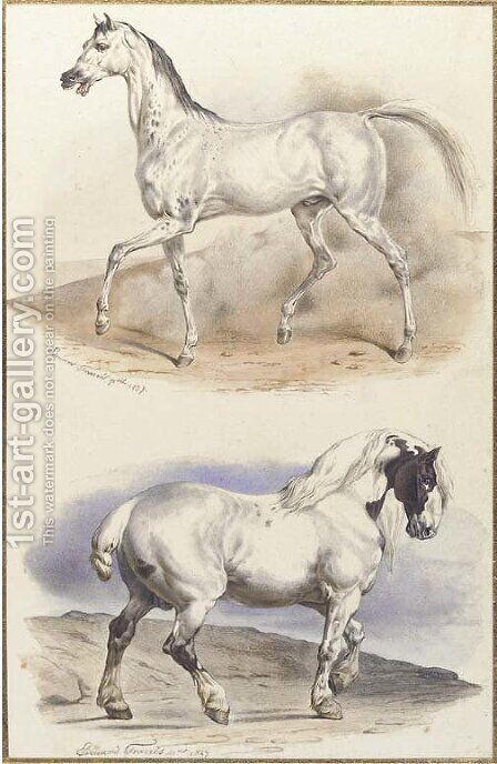 An Arab stallion and a carthorse by Edouard Travies - Reproduction Oil Painting