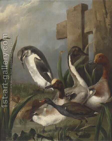 Ducks, a moorhen, an auk and a dragonfly by a river by (after) Aert Schouman - Reproduction Oil Painting