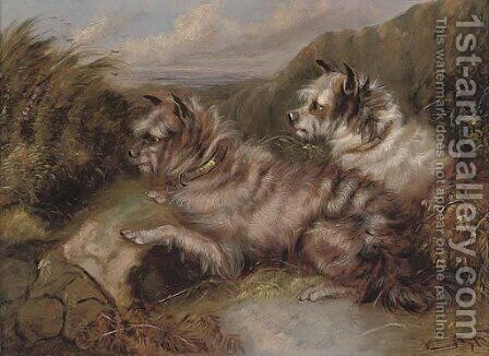 Terriers on the scent by (after) George Armfield - Reproduction Oil Painting
