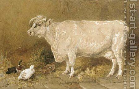 Cow with ducks in a barn by Harrison William Weir - Reproduction Oil Painting