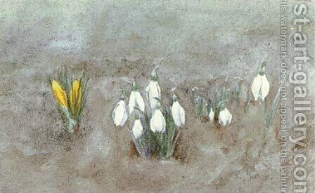 Study of crocuses by Helen Mary Elizabeth Allingham, R.W.S. - Reproduction Oil Painting