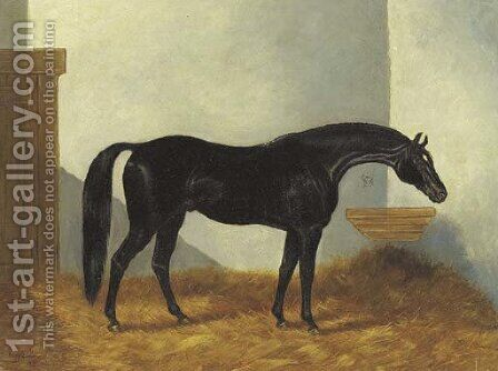 Virgil, a Black Stallion in a stable by Henry Stull - Reproduction Oil Painting