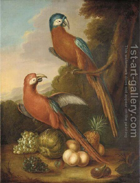 Two parrots, grapes, peaches, figs, a melon and a pineapple in a wooded landscape by Herman van der Myn - Reproduction Oil Painting