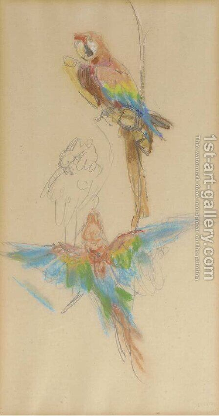 Colourful parrots from Artis Zoo by Isaac Israels - Reproduction Oil Painting