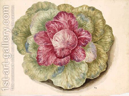 Brassica (Cabbage) by Italian School - Reproduction Oil Painting