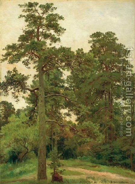 Pine trees, Merekiul' by Ivan Shishkin - Reproduction Oil Painting