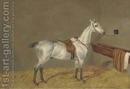 A grey racehorse in a loose box by Henry Shaw - Reproduction Oil Painting
