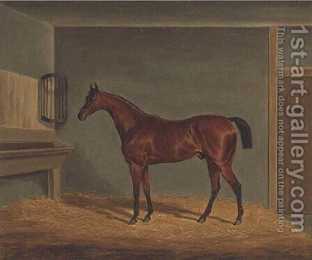 A bay racehorse in a stable by James Loder - Reproduction Oil Painting